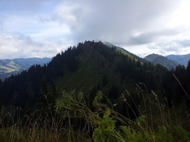Wanderweg - Ausblick auf Hochgrat