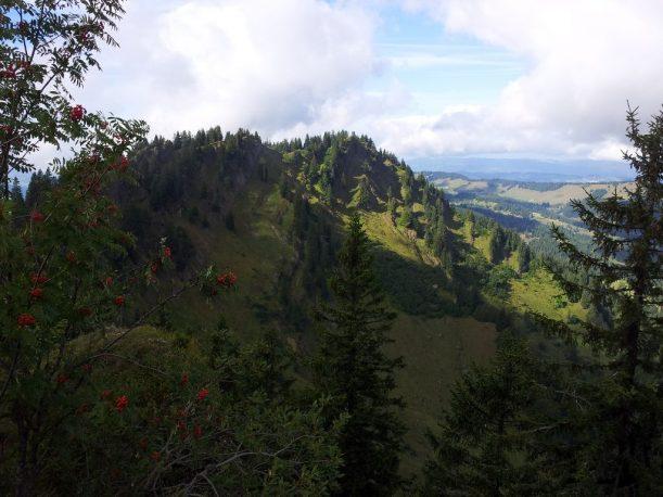 Blick auf Eineguntkopf - Wanderweg