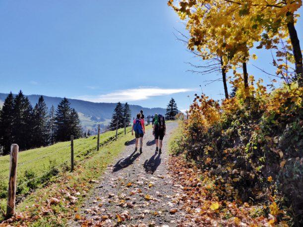 Westallgäuer Wanderwochen - Panoramawanderung Alpsee - Herbstwanderung