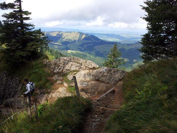 Wanderweg bergab zum Eineguntkopf