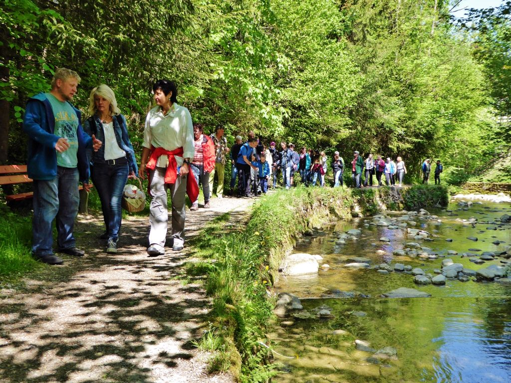Wildkräuterführungentlang des Hausbachs in Weiler im Allgäu