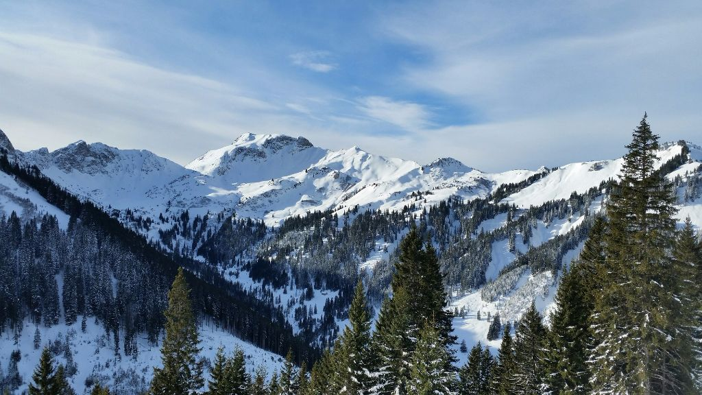 Tolle Aussicht in die Allgäuer Alpen