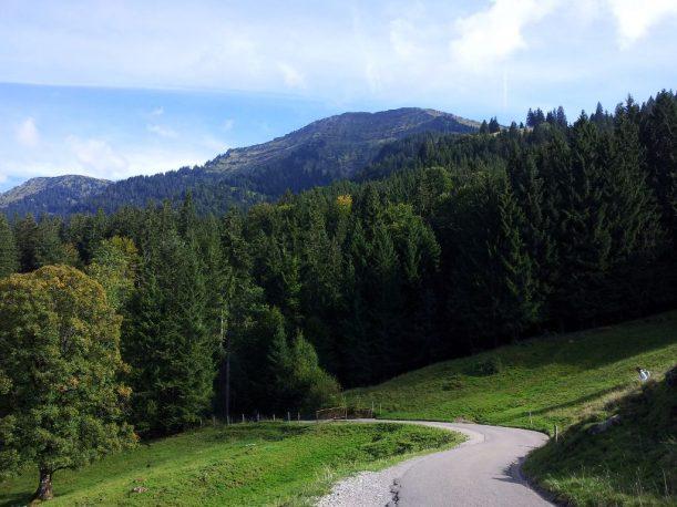 Wanderweg - Heimweg