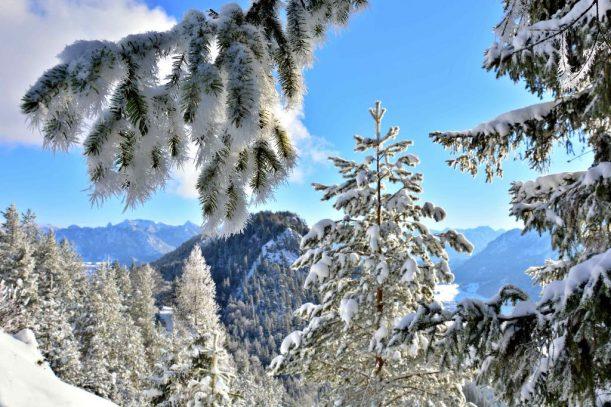 4. Falkenstein Blick Füssen Winterzauber