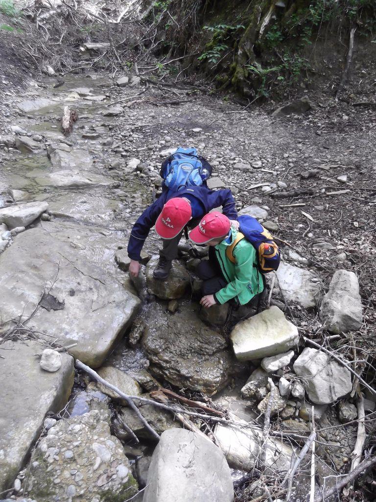 Wanderung-Wildes-Wasser-Buchenegger-Wasserfälle-001