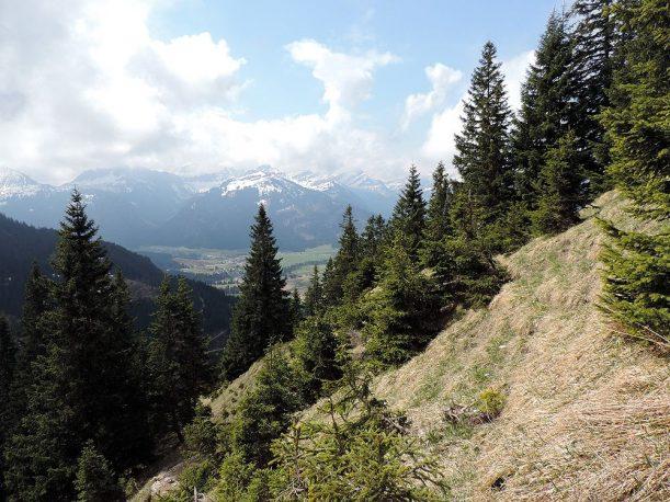 Aussicht übers Tannheimer Tal, Tirol