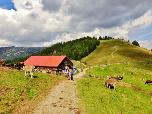 Alpe Fahnengehren auf dem Hörner-Panoramaweg
