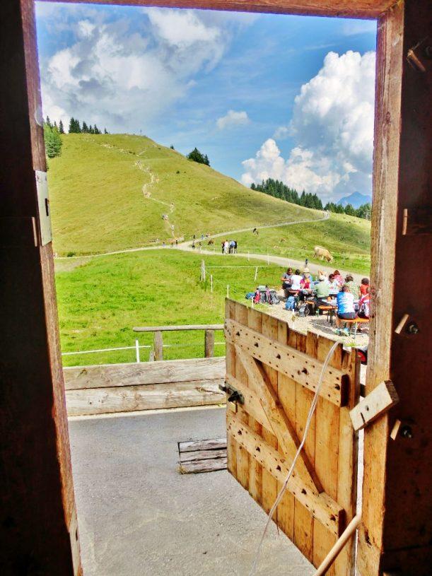 Alpe Fahnengehren - Blick auf das Ofterschwanger Horn