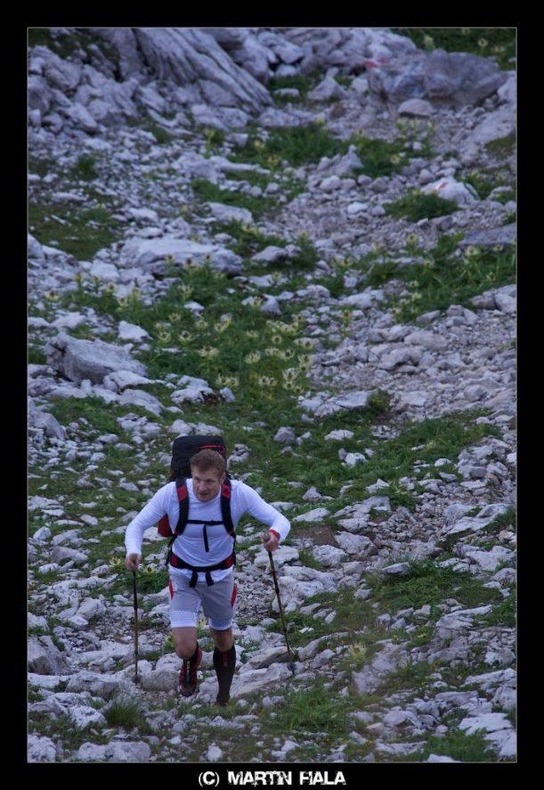 Grüne Farbtupfer schmücken die kahle Landschaft in den Allgäuer Alpen