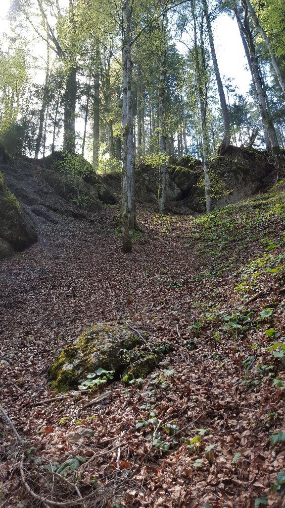 Wanderung vorbei an einem laubbedeckten Felshang im Gunzesrieder Ostertaltobel
