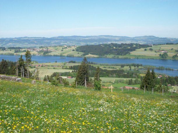 Im Allgäu unterwegs von Oy-Mittelberg nach Rettenberg