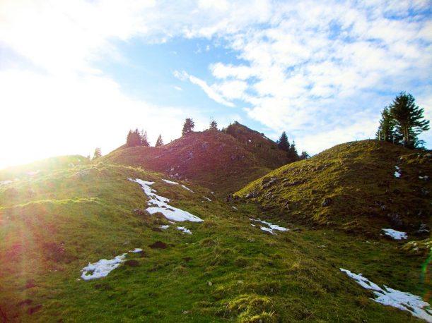 Grasbewachsener Weg vom Ornach auf den Gipfel des Jochschrofen