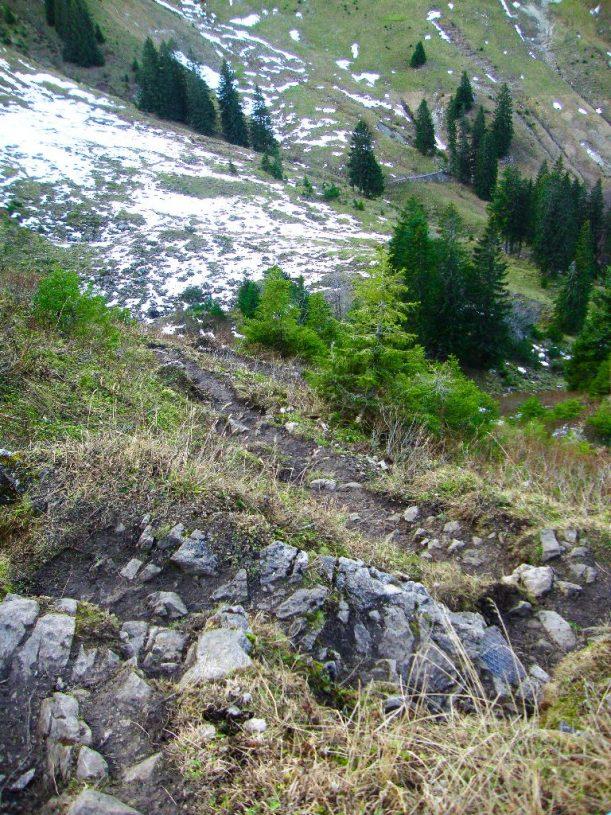 Der steile und steinige Weg vom Ornach ins Tal zur Hirsch-Alpe
