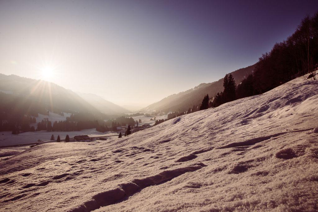 Ein Kraftort im Allgäu - die Alten Eiben in Balderschwang wachen über das Tal.