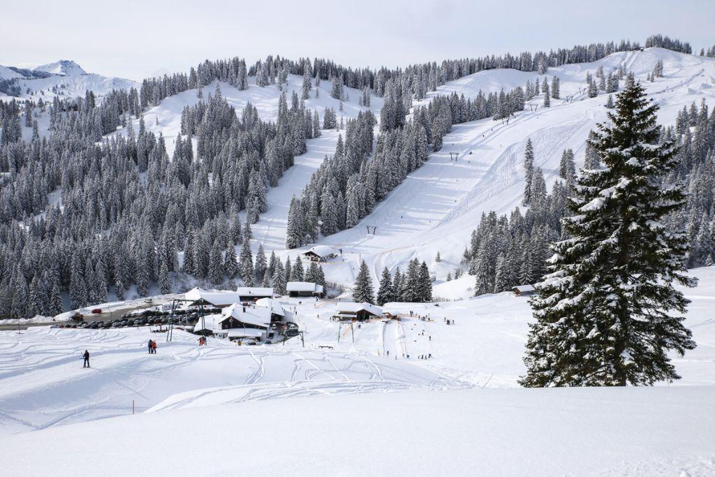 Grasgehren_Ski_fahren©SBaade-17