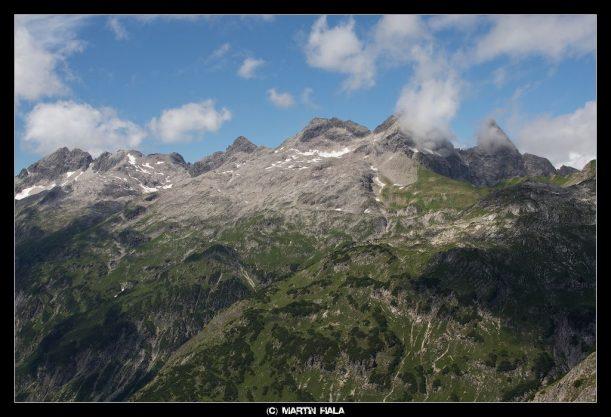 Vegetation der Allgäuer Berge