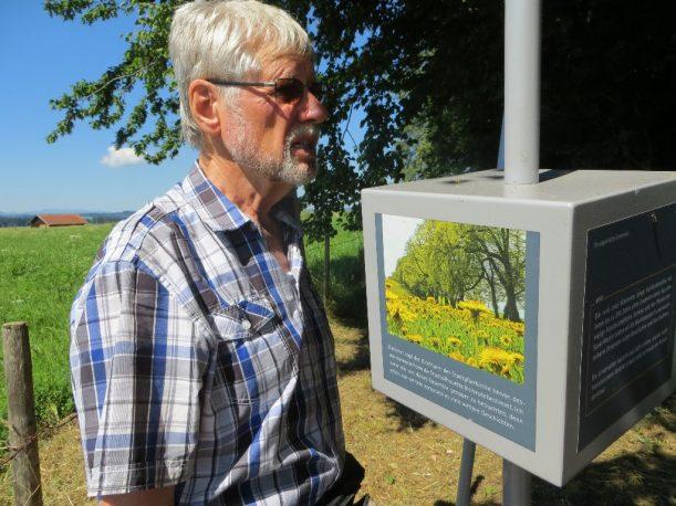 """Das Schaufenster am """"Drei Bäumle"""" erzählt u.a. von Venediger-Männchen"""