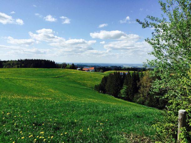 Auf dem Rückweg nach Wiggensbach
