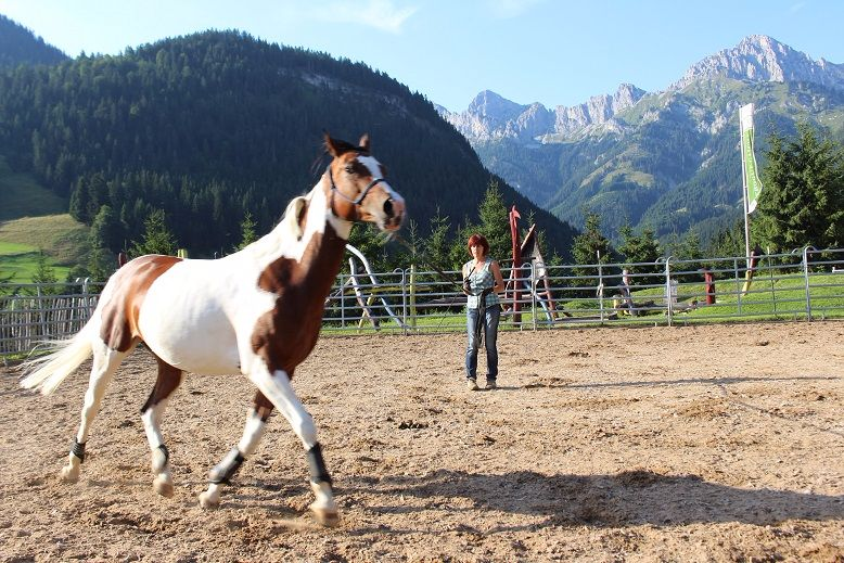 Reiterhof Berggut Gaicht im Tannheimer Tal, Tirol
