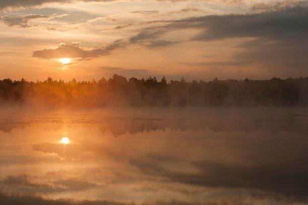 Nebel im Allgäu