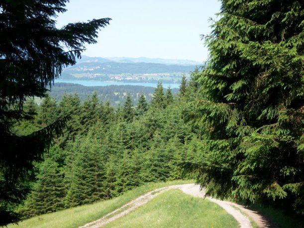 Wandern, Wanderweg, Wanderroute, Bergsteigen