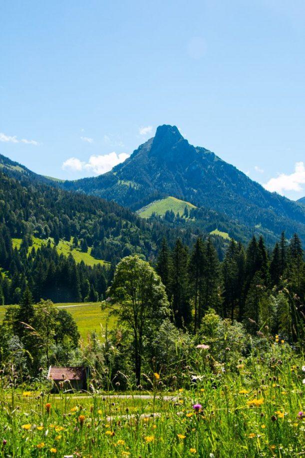 Erste Kehre zur Bärenmoos Alpe