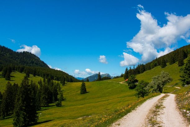 Bärenmoos Alpe
