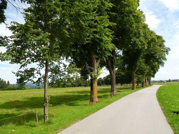 Radweg, Radfahren, Radtour, Radroute