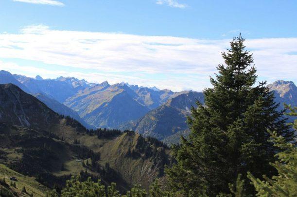 panorama allgäuer alpen und tannheimer berge