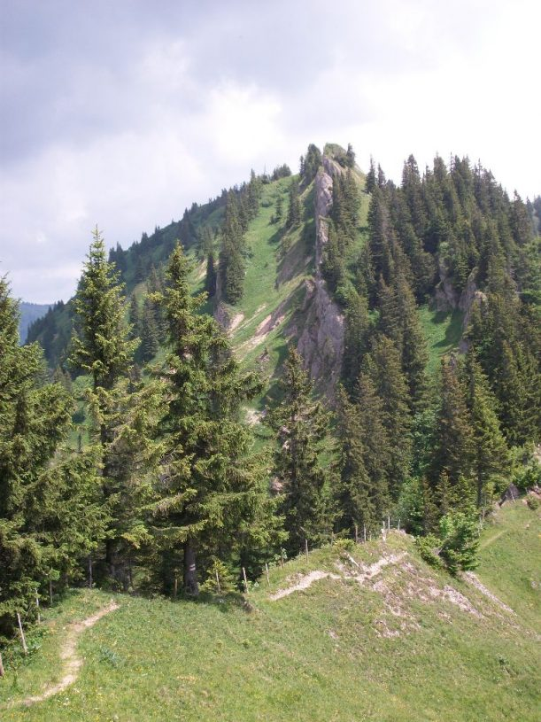 Wandern, Wanderung, Wanderweg, Wanderroute, Bergsteigen