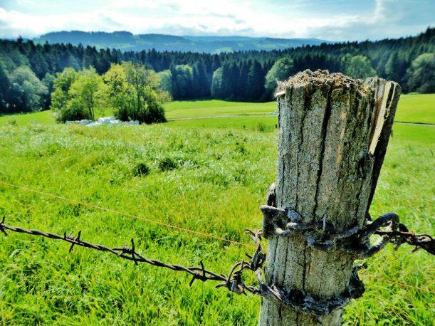 Wanderung Ausssicht und Käse im Westallgäu