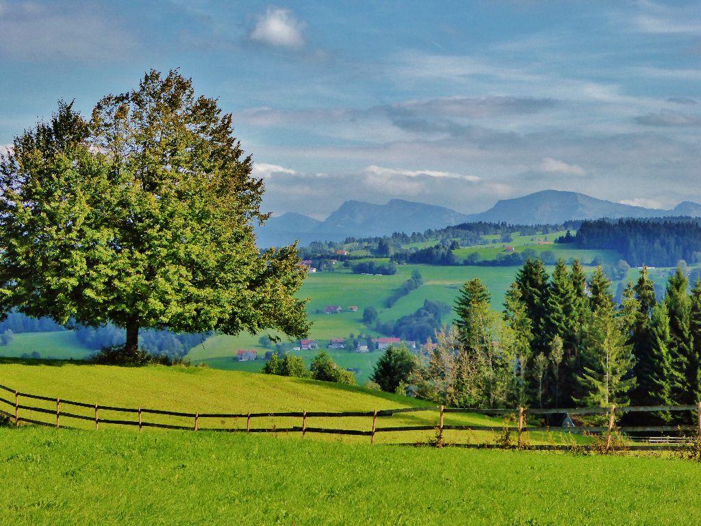 Wanderung Aussicht und Käse im Westallgäu