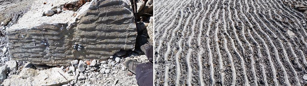Rippelmarken - fossil (links) und rezent (rechts)