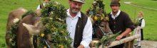 Viehscheid in Eisenberg: Traditionsveranstaltung mit Herz